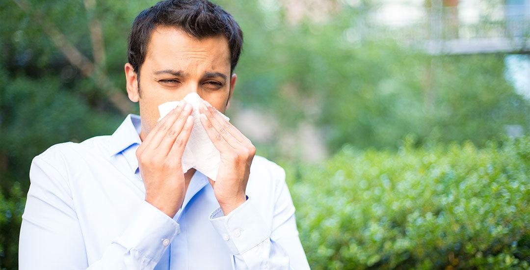 Sommersnue eller allergi?
