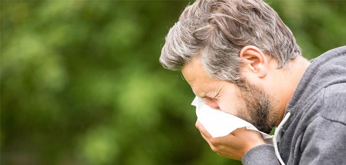 Høfeber eller forkølelse? Det her er forskellen
